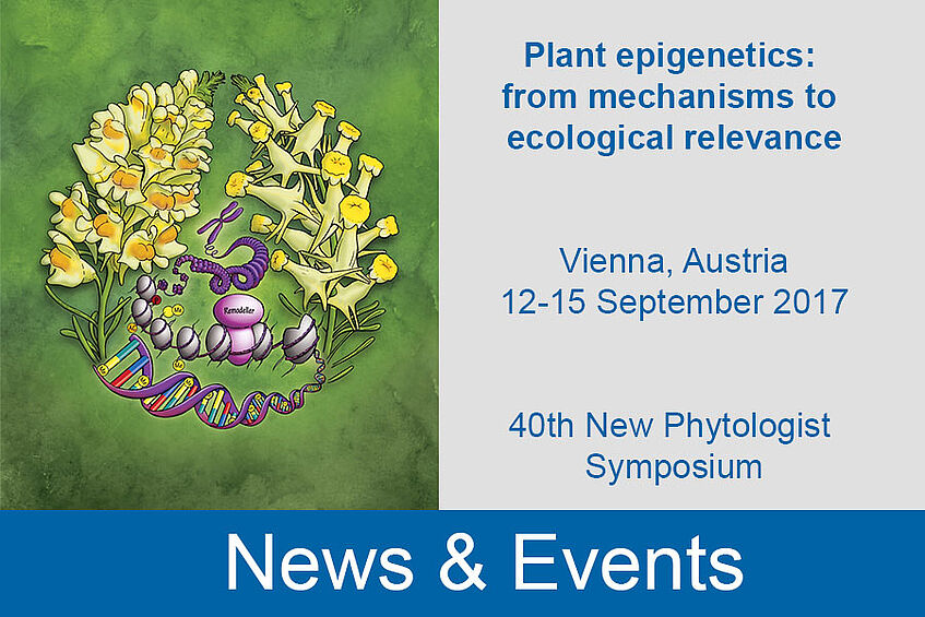 Plant epigenetics: from mechanisms to ecological relevance - 40th New Phytologist Symposium, Sept. 2017 in Vienna, Austria